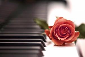 pianino-roza-muzyka-2073