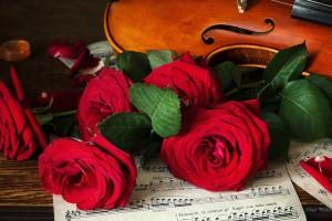 cvety-rozy-noty-skripka-list